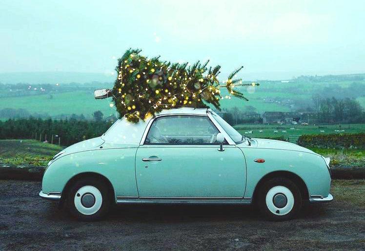 """<img src=""""mespromenades_en_vacances_voiture_avec_un_sapin_de_noel"""" alt=""""mespromenades en vacances voiture avec un sapin de noel""""/>.jpeg"""