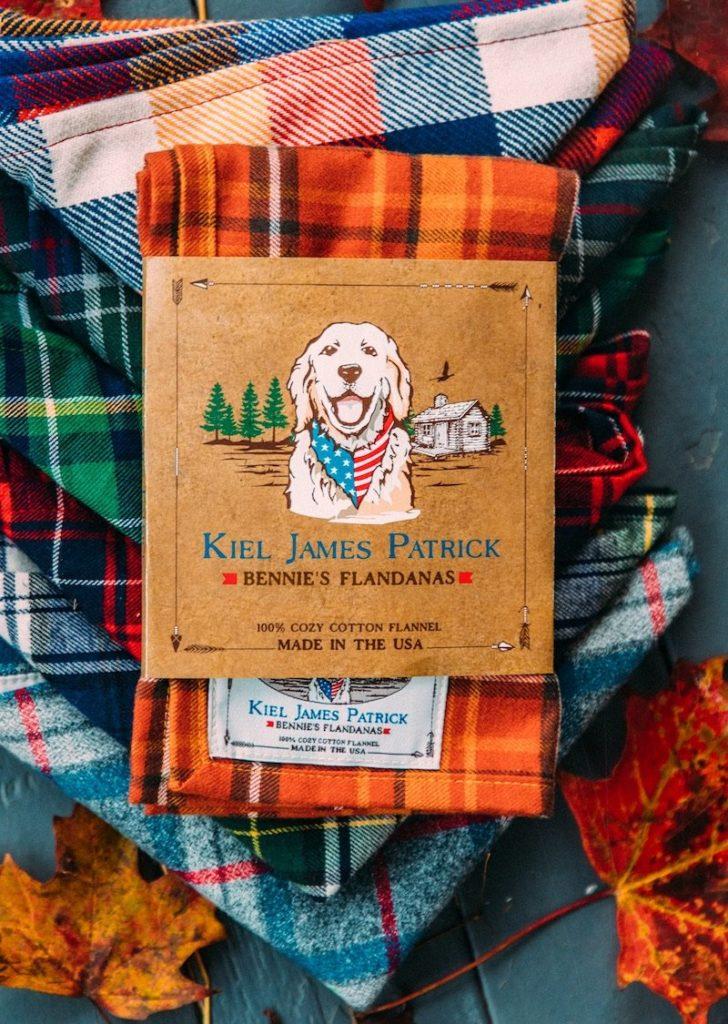 mespromenades-labrador-bandana-©- photo-kiel-james-patrick